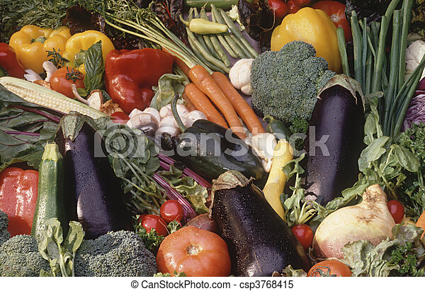 vegetable bounty - csp3768415