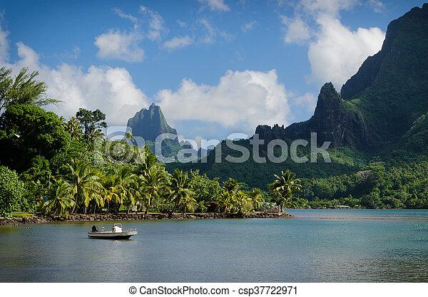 Image de vert paysage moorea bateau dans cuisiniers for Cuisinier bateau