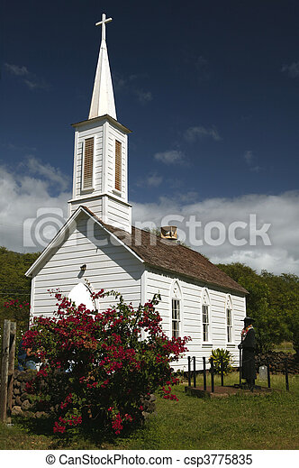 Father Damien's Church - csp3775835