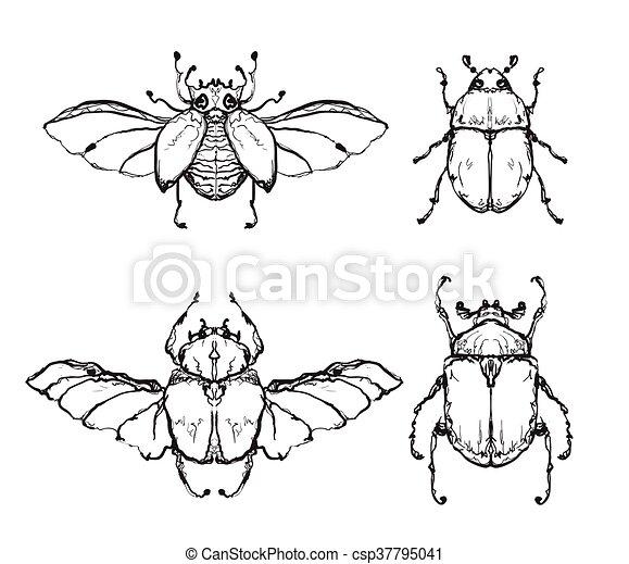 eps vektor von gezeichnet insekt fl gel hand hand gezeichnet flies csp37795041. Black Bedroom Furniture Sets. Home Design Ideas
