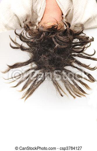 cabeza,  rasta - csp3784127