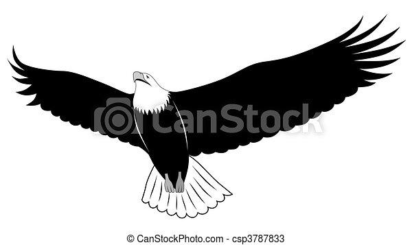 Eagle, tattoo - csp3787833