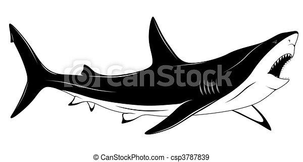 Eps Vectors Of Shark Tattoo Predatory Shark With An