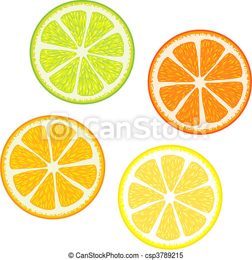 citrus fruits - csp3789215