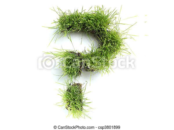 Symbols made of grass - question mark - csp3801899