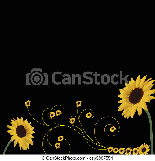 sunflowers border - csp3807554