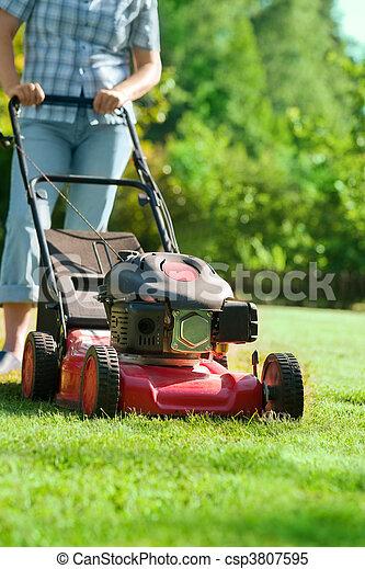 lawn mower - csp3807595