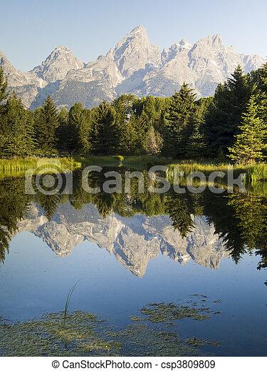 Teton Peaks and Beaver Pond - csp3809809