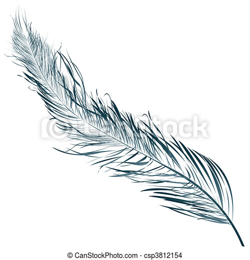 Blue feather - csp3812154
