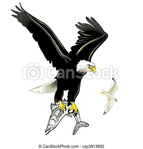Eagle Catching Fish Drawing Clip Art of Eagle and ...