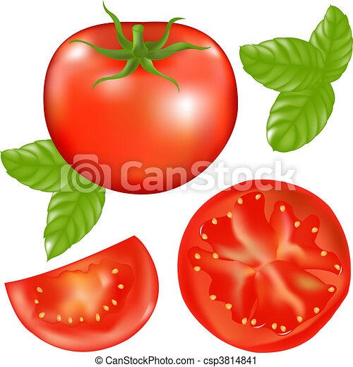 Tomato With Slices Of Tomato And Basil Leaves - csp3814841