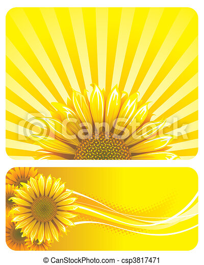 Sunflower - csp3817471