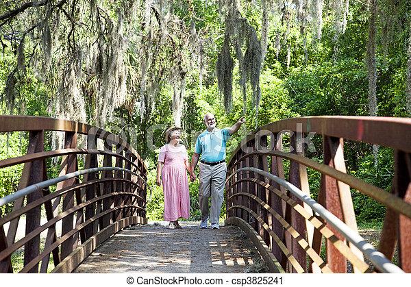 Seniors on a Stroll - csp3825241