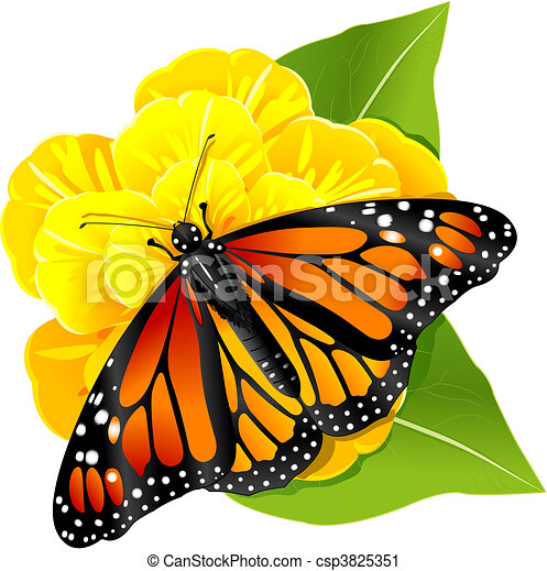 Vector Clip Art of Monarch butterfly on the flower ...