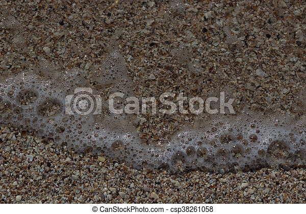 Sea Shells Seashells - csp38261058