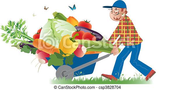 Harvest - csp3828704