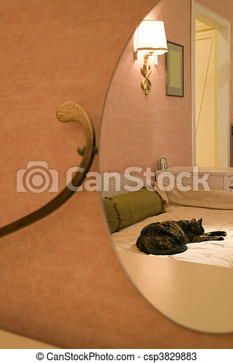 a part of room - csp3829883