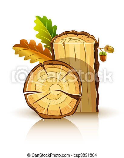wooden material of oak with leafs and acorns - csp3831804