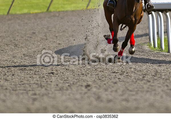 Horse Racing - csp3835362