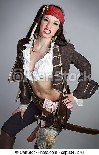Sexy Pirate Woman - csp3843278