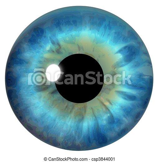 Blue Eye Iris - csp3844001