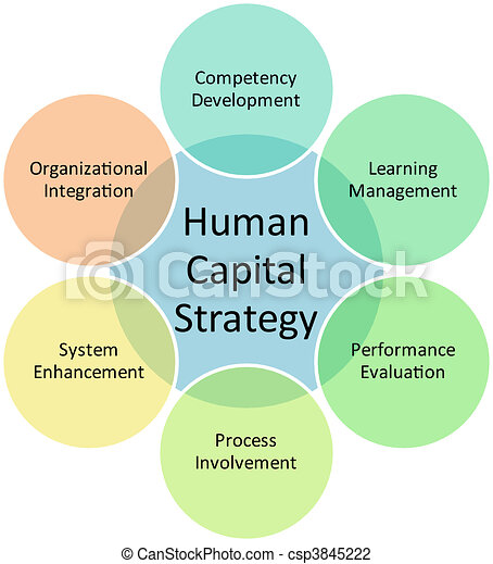 Human capital business diagram - csp3845222