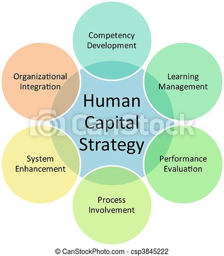 Human capital business diagram - csp3845222