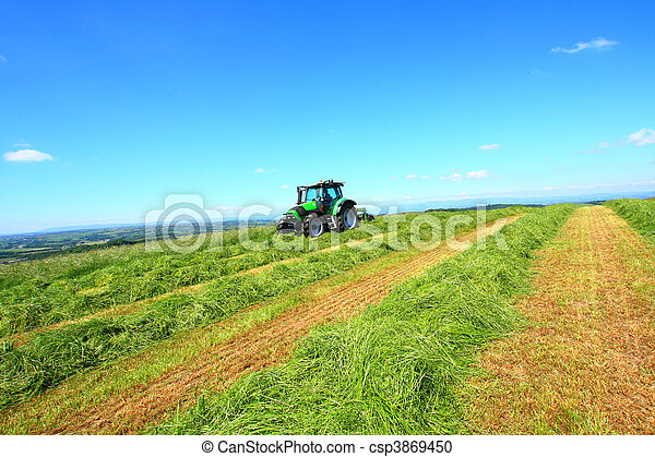Haymaking in Sotland - csp3869450