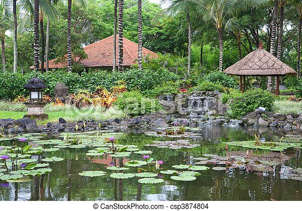 Photo de beau exotique ext rieur jardin paume arbres for Arbre exotique exterieur