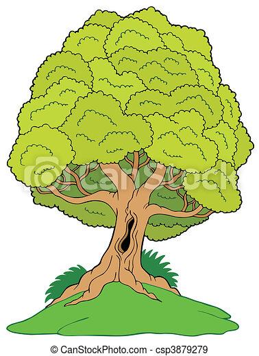 Leafy tree on hill - csp3879279