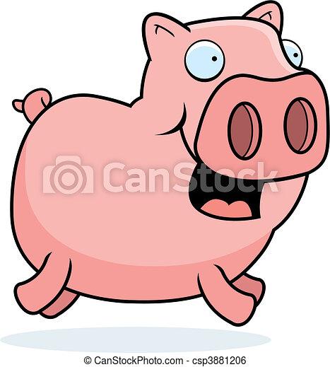 Pig Running - csp3881206