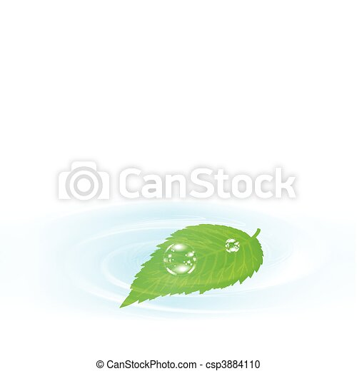 Single green leaf over the water  - csp3884110