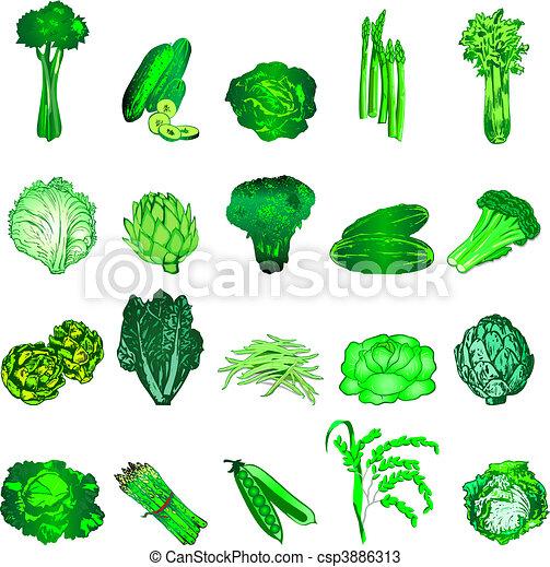 Green Veggies - csp3886313