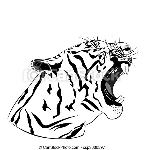 Tiger, tattoo - csp3888597