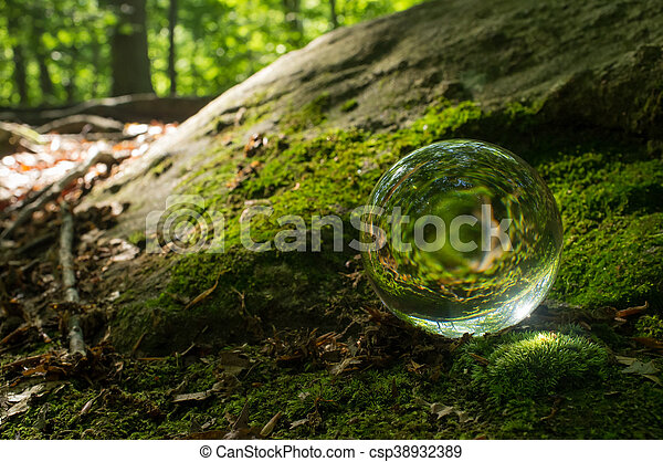 Magic crystal ball on forest floor for summer fantasy imagery