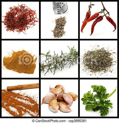 spices and condiments collage - csp3895381