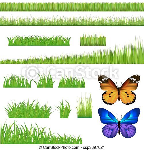 2 Butterflies And Green Grass Set - csp3897021