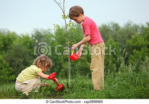kids plant the tree - csp3898960