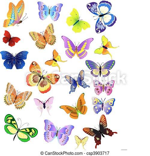 set of different butterflies - csp3903717