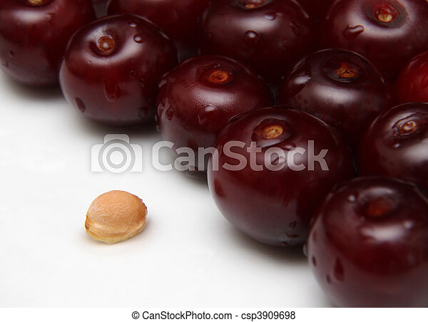 sour cherry - csp3909698