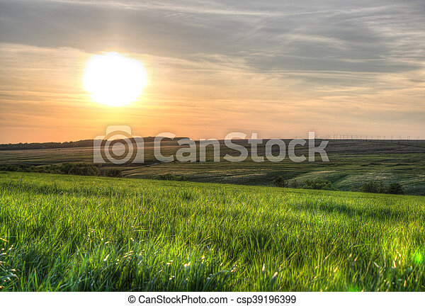Sunset over green grass field. - csp39196399