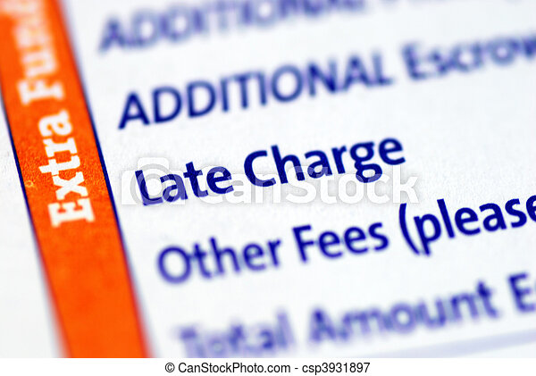 Focus on the Late Charge item  - csp3931897