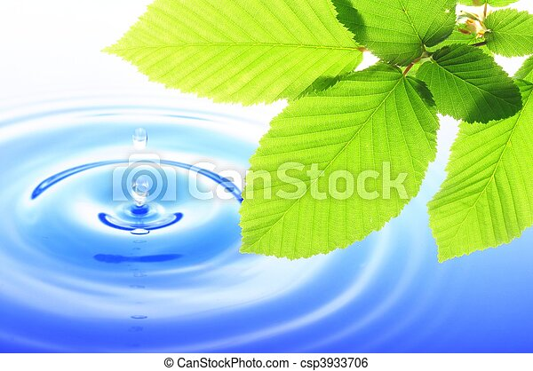 natura - csp3933706