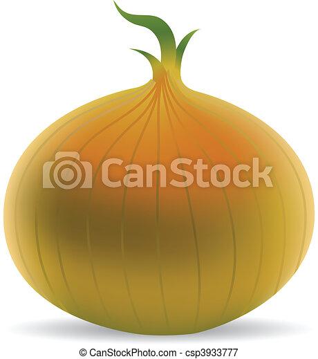 Onion - csp3933777
