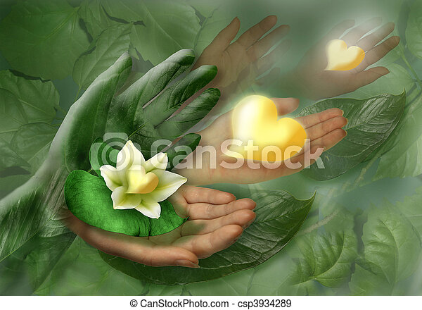 Still-life with hands, leaf and flower as heart - csp3934289