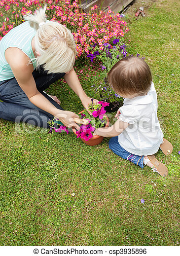 Family plant flowers in the garden - csp3935896