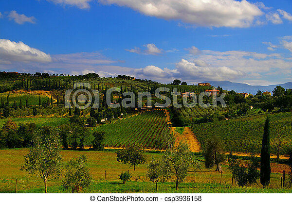 Landscape of Italian Tuscan villas and vineyards - csp3936158