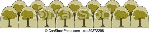 Forest - csp39372298