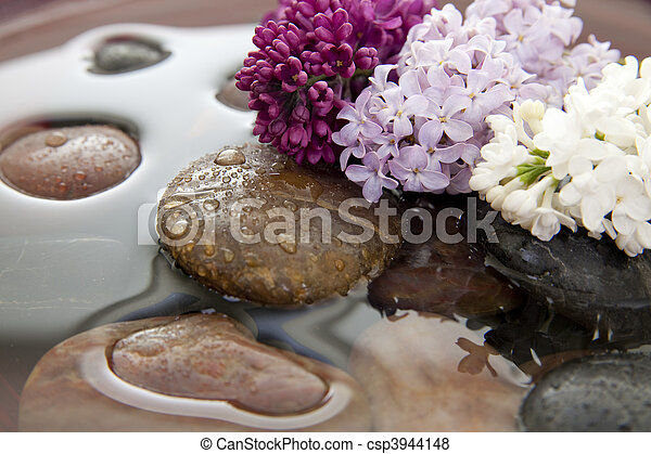 Immagini di fiori acqua pietre pietre e lilla fiori - Serenelle fiori ...