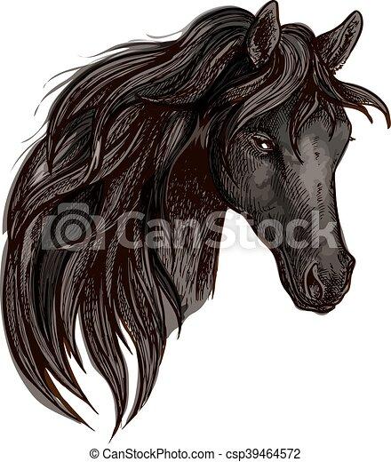 Black horse head watercolor portrait - csp39464572